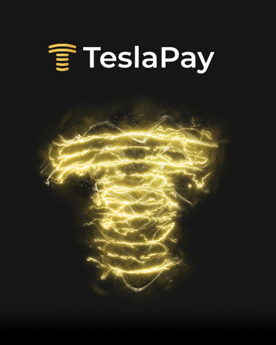 TeslaPay